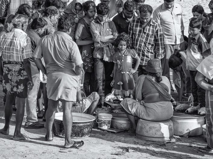 A local fishmarket in Kerala / India / Travel Photography / Street Photography / Matthieu Waddell Photo / Professional Photographer / Paris Photographer