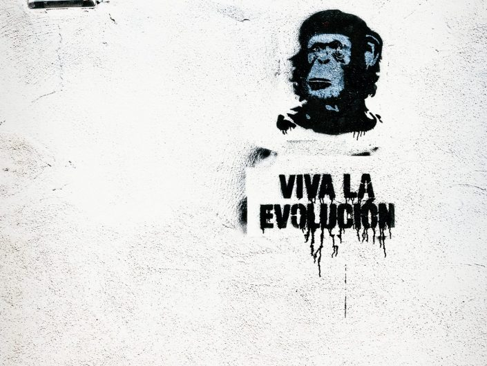 Viva la Evolucion - Seen in Ischia / Italy / Travel Photography / Street Photography / Matthieu Waddell Photo / Professional Photographer / Paris Photographer